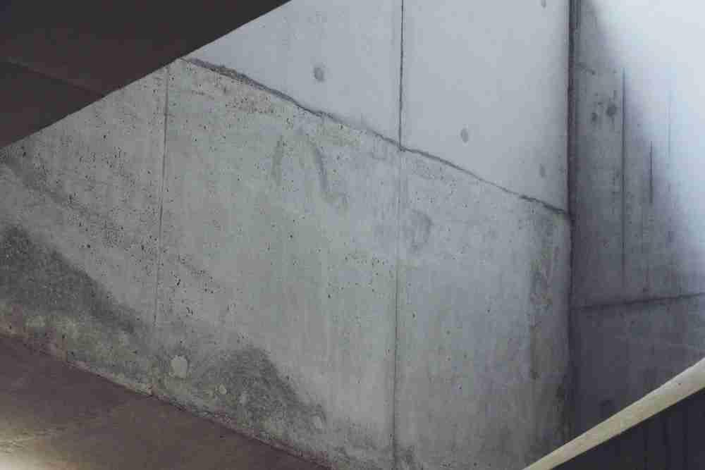 Mold on drywall